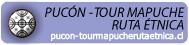 Tour Mapuche Ruta Etnica